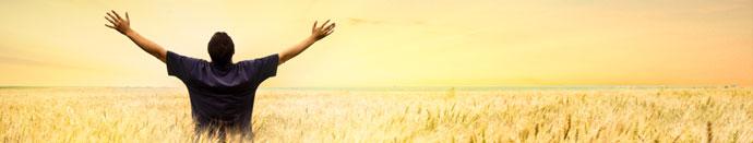 Vas zanima zakaj optimisti vedno zmagajo in premagujejo težave?