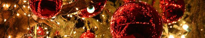 Ho Ho Ho, vesel božič vsem!