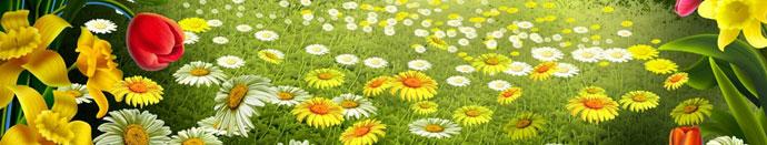 Zima se poslavlja, prihaja pomlad!